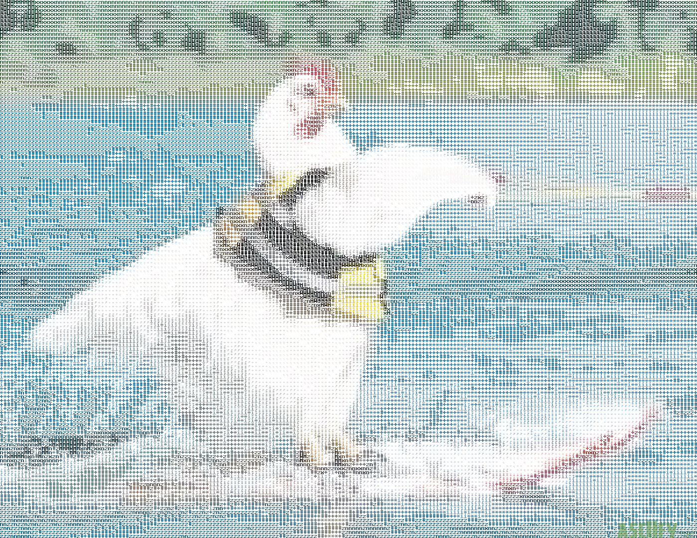 Surfing chicken