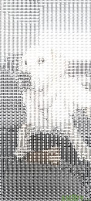 Phantom Dog