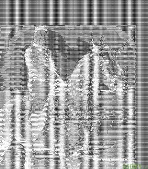 kim jong un montando un unicornio