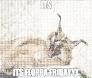 its floppa firday