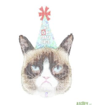 Grumpy cat party hat