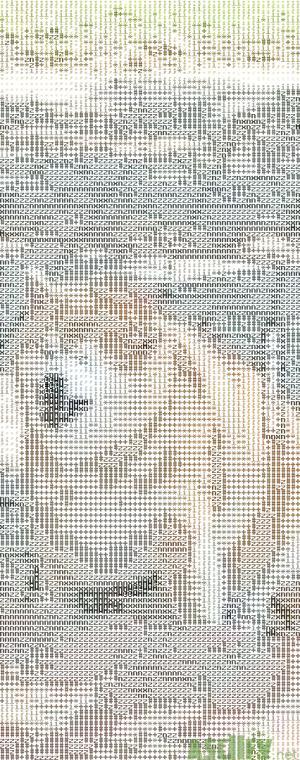 Fat doggo