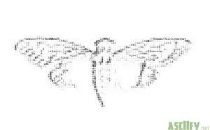 cicada 3301 smaller