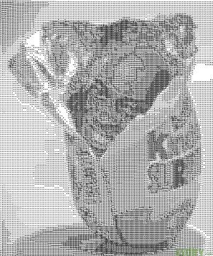 Harriot egg