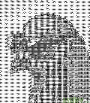 Coo Pigeon