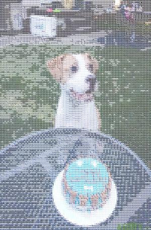 Hobbes ASCII