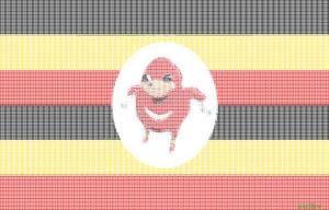 DE FLAG OF DE WEY