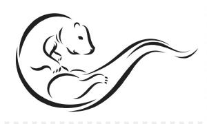 Cyber otter