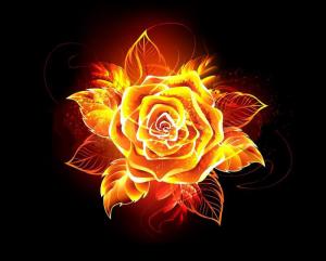 fire flower 2.0