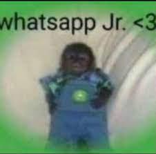 WHTSAAP JR