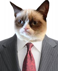 Grumpy cat suit