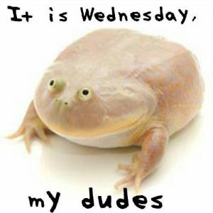 It's wednesday